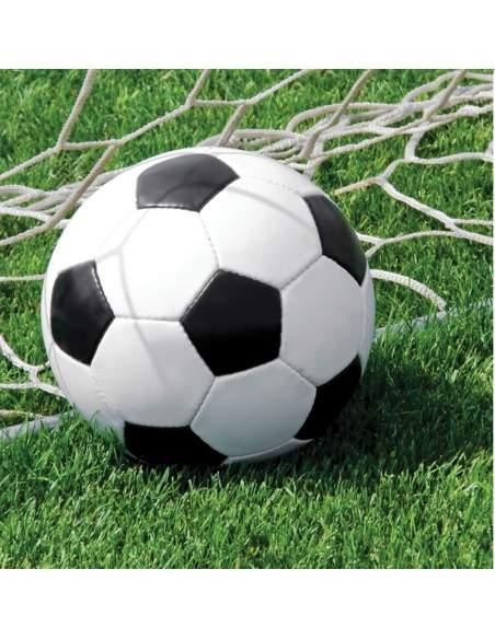Pack décoration d'anniversaire football Biogato - 7