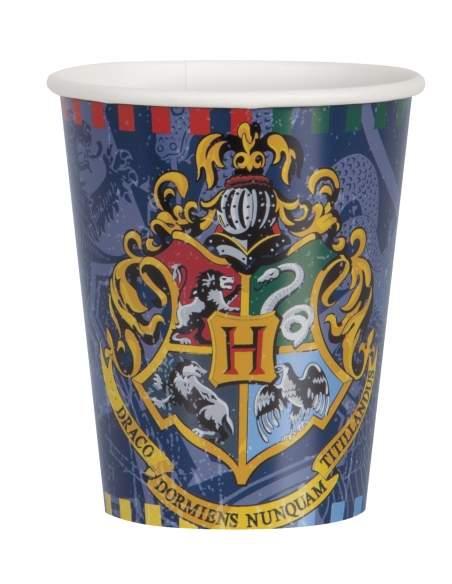 Pack décoration d'anniversaire Harry Potter Biogato - 4