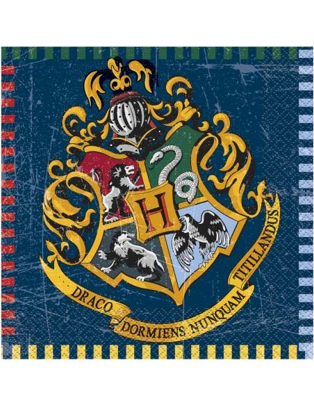 Pack décoration d'anniversaire Harry Potter Biogato - 6