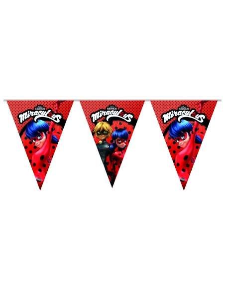 Pack décoration d'anniversaire Ladybug Miraculous Biogato - 6
