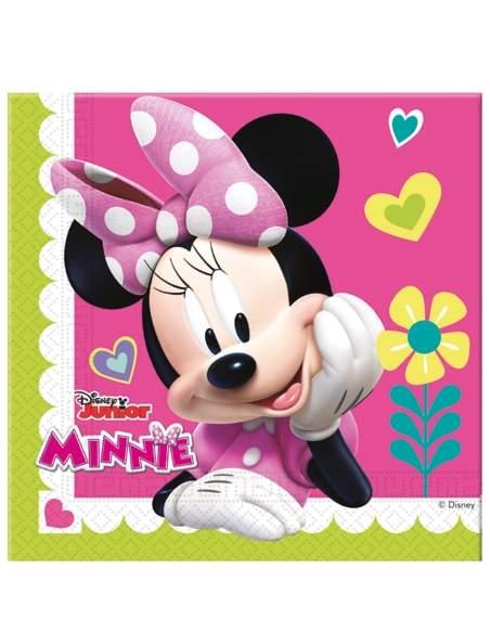 Pack décoration d'anniversaire Minnie Biogato - 5